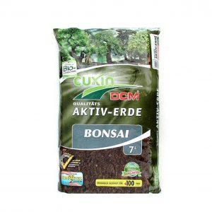 Bonsaierde
