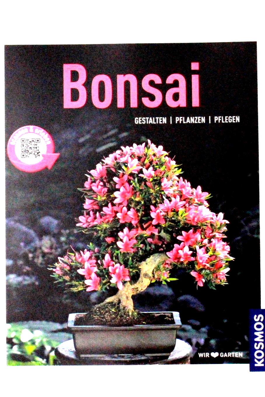 bonsai gestalten pflanzen pflegen bei oyaki bonsai kaufen. Black Bedroom Furniture Sets. Home Design Ideas